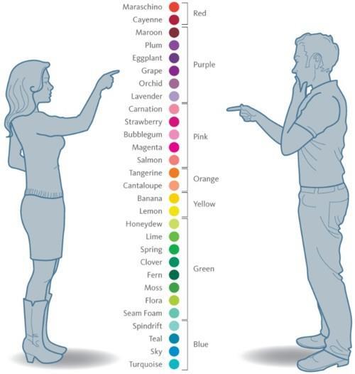 Jak barvy ovlivňují nakupování na internetu?