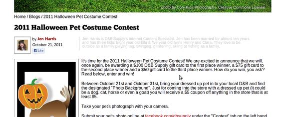 v této halloweenské soutěži vyhrává nej zvířecí kostým